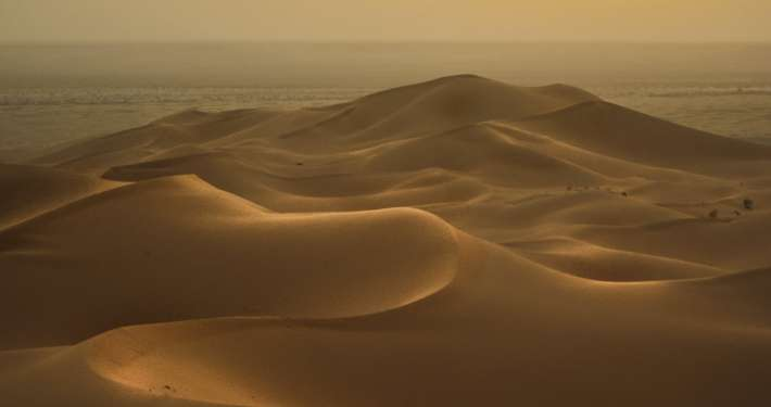 View of dunes in the desert at sunset